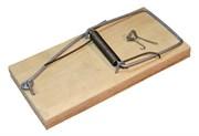 Крысоловка деревянная (шт.)